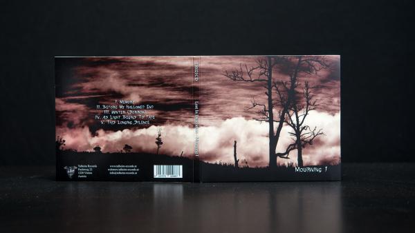 Lost in Desolation - Mourning I Präsentation 1